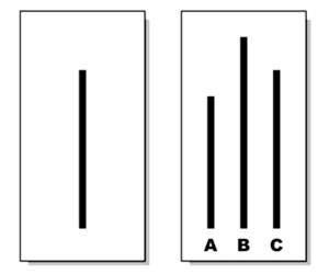 Tarjeta - El Experimento de Conformidad con el Grupo
